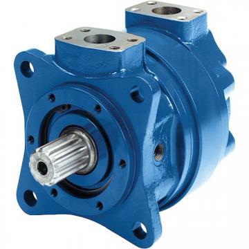 Sany SY265 Hydraulic Final Drive Motor