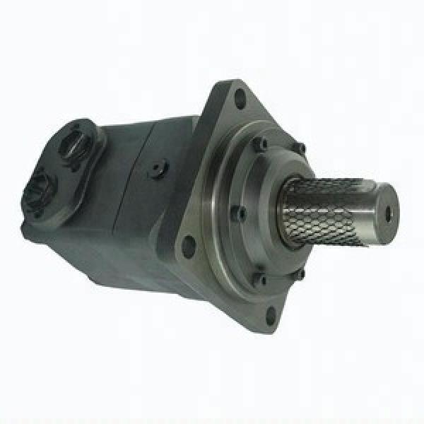 JCB 165HI Reman Flow Hydraulic Final Drive Motor #3 image