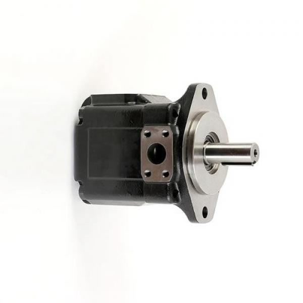 JCB JS220 Heavy Duty Hydraulic Final Drive Motor #1 image