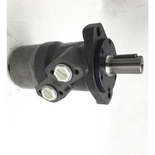 JCB JS145 Heavy Duty Hydraulic Final Drive Motor #2 image